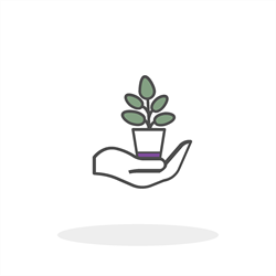 Hand holding a plant carefully